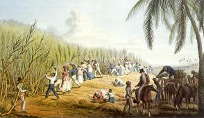 these are slaves they would normally be in central america and europe